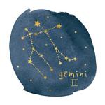 Horoscope Gemini Wall Art Print