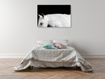 White Horse on Black I Wall Art Print on the wall