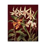 Orchid Trio I Wall Art Print