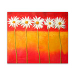 Daisies One