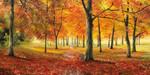 Autumn Impression Wall Art Print