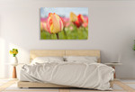 Spring Sherbet Wall Art Print on the wall