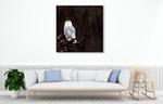Owl Wall Art Print on the wall