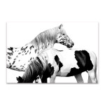 Spotted and Pinto Wall Art Print
