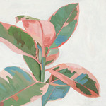 Pink Ficus I Wall Art Print