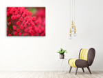Pink Flower Wall Art Print on the wall