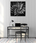 Succulent I Wall Art Print on the wall