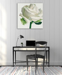White Rose I Wall Art Print on the wall