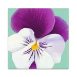 Flower Art II Wall Art Print
