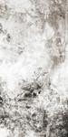 Chaotic Calm Neutral II Wall Art Print