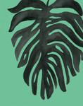 Tropical Palm II Wall Art Print