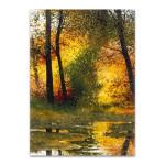 Autumn Pond Wall Art Print