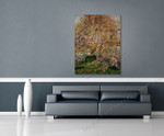 The Walnut and Apple Trees in Bloom at Eragny on the wall