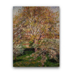 Camille Pissarro | The Walnut and Apple Trees in Bloom at Eragny
