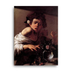 Caravaggio   Boy Bitten by a Lizard