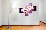 Ponderosa-01210 on the wall