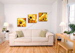Sunflower Medley on the wall