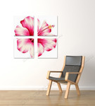 Pink Hibiscus on the wall