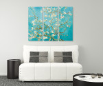 Almond Blossom - 3panels on the wall