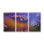 Purple Water Lilies - 3panels
