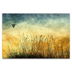 Fields Vintage Art Print