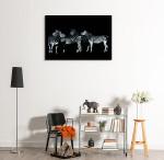 Monochrome Wildlife Portrait Art Print on the wall