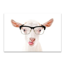 Goat In Glasses Canvas Art Print