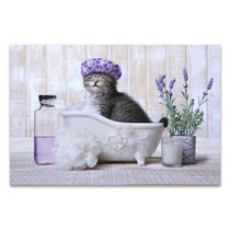 Kitten In A Bathtub Wall Print