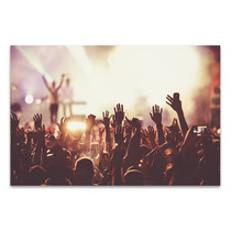 Summer Music Festival Canvas Print