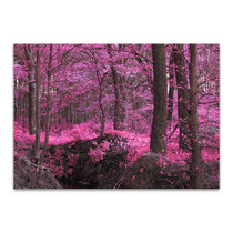 Magic Wood Wall Print