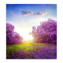 Spring Lilac Canvas Arts Print