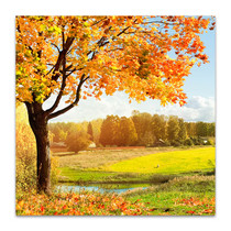 Sunny Autumn Wall Canvas Print