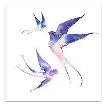 Watercolour Swallows Wall Art Print