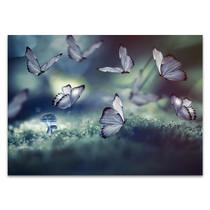 Glowing Butterflies Wall Art Print