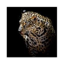 Wild Leopard Wall Art Print