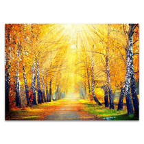 Autumn Sun Rays Wall Art Print