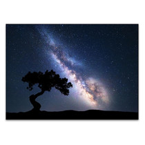 Milky Way at Night Wall Art Print