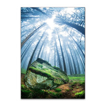 Forest Moss Grass Wall Art Print