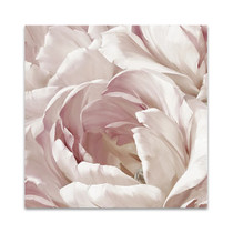 Intimate Blush II Wall Art Print