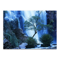 Australia Forest Waterfall Wall Art Print