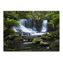 Mount Field National Park Australia Wall Print