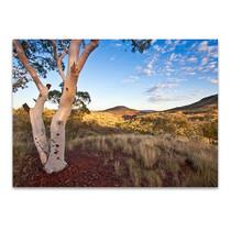 Pilbara Western Australia Wall Art Print