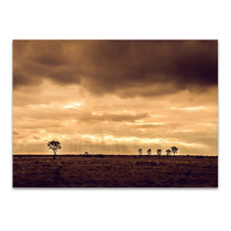 Sunset Queensland Australia Wall Art Print
