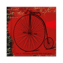 Bicycle II Wall Art Print