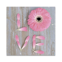 Flower of Love Wall Art Print