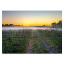 Morning Mist Wall Art Print