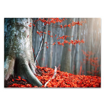 Autumn Fallen Leaves Wall Print
