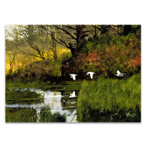 Pond Flight Wall Art Print