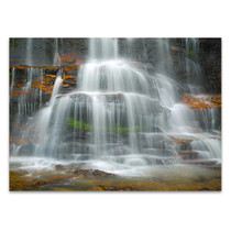 Rainforest Waterfall Wall Art Print