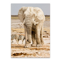 Elephant in Africa Wall Art Print